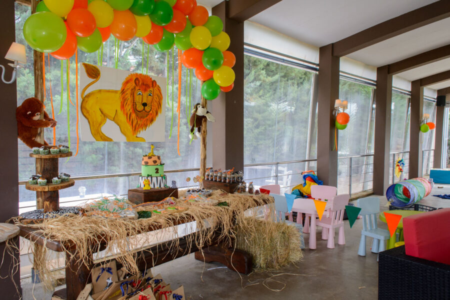 thematiko paidiko party safari candy bar