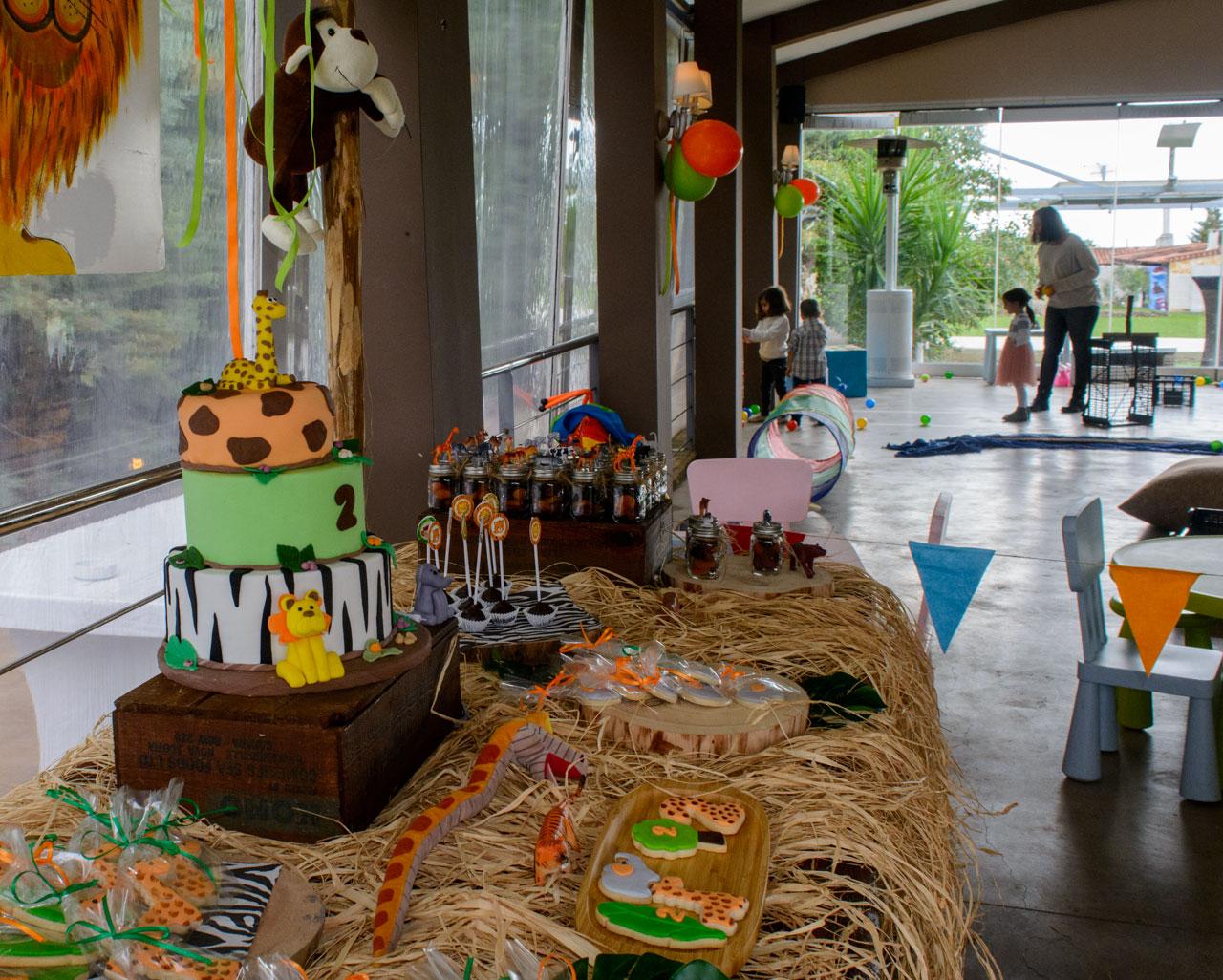 thematiko paidiko party safari