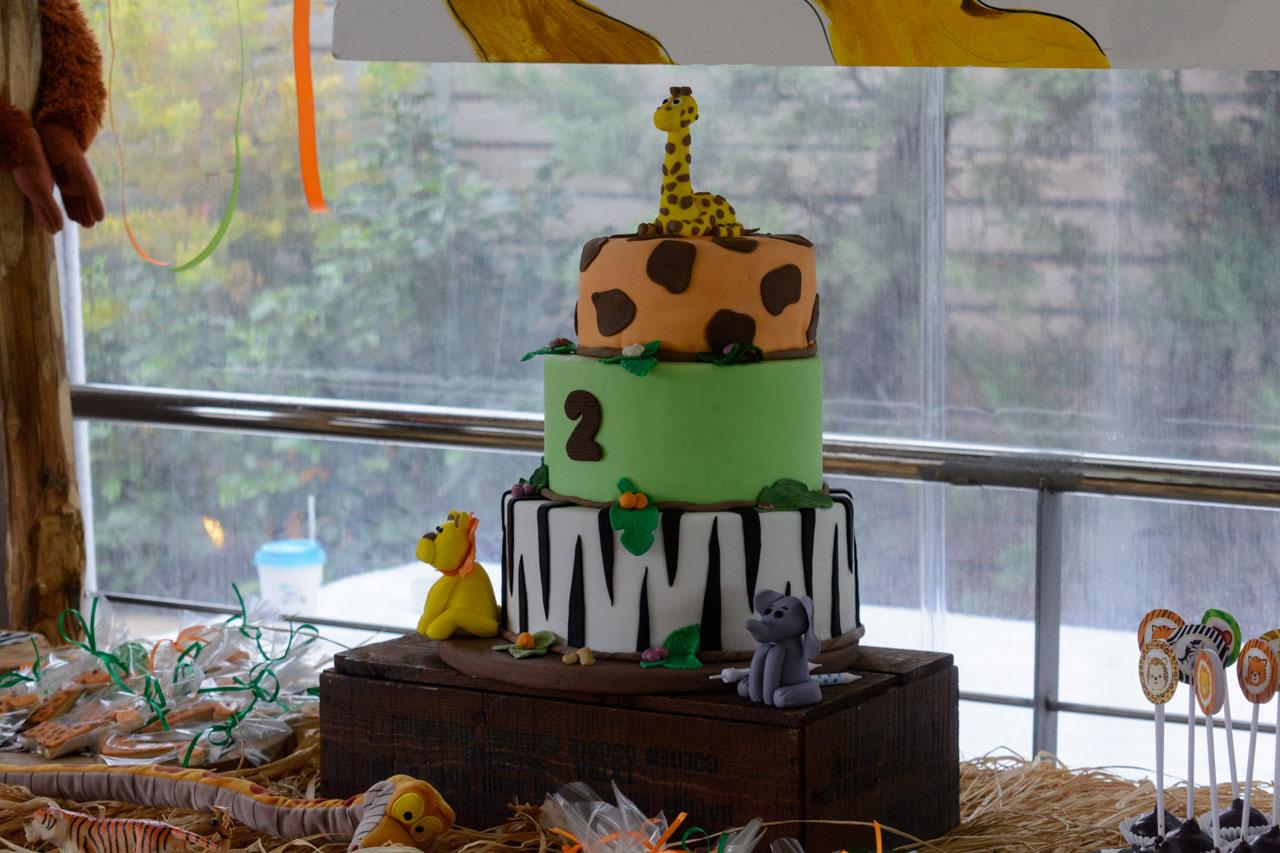 thematiko paidiko party safari tourta